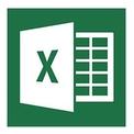 Microsoft Excel 2013 logo
